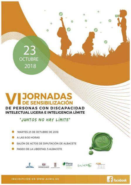 VI JORNADAS DE SENSIBILIZACIÓN ACMIL